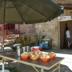 2017-07-16-Campamento Trueba (87) [1024x768]