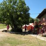 2017-07-17-Campamento Trueba (266) [1024x768]