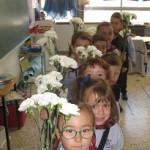 Hemos traído flores